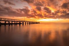 Another Sunrise (Whitejellybeans) Tags: wellingtonpoint sunrise jetty pier golden orange