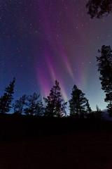 Revontulet (mustohe) Tags: 2018 finland lappi ukk kansallispuisto vaellus syksy nationalpark urhokekkosenkansallispuisto urhokekkonennationalpark revontulet auroraborealis yö night tähtitaivas stars