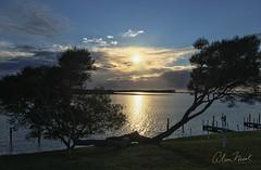 Mallacoota Sunrise (caralan393) Tags: sunrise mallacoota dawn phone