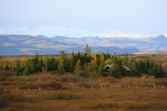 From Iceland. (Tóta. 27.12.1964.) Tags: autumn house trees grass mountain sky borgarfjörður iceland ísland