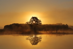 IMG_4579 (geraldtourniaire) Tags: natur nature nebel sonnenaufgang landschaft canon eos6d ef 24105l mittelfranken gegenlicht goldene
