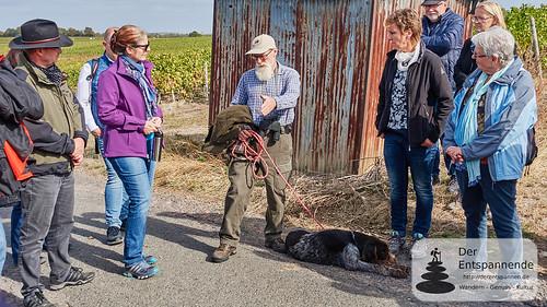 Bernhard erklärt Training und Einsatz von Jagdhunden