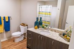 Real Estate - CityScape Bathroom (BobbyFerkovich) Tags: sonya7riii mirrorless apartment bellevuewashington cityscape real estate