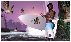Hummingbird Point Pro Surf Team! (frankieedon) Tags: second life secondlife surf surfing team pro