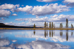_MG_4368 - Yellowstone skies. (j. mercier) Tags: sky skies cloud clouds nature nationalparks jerrymercier mercier beauty beautiful best tree trees pine pines cumulus big blue white reflection reflections reflected mirror afternoon light outdoor outside outdoors landscape landscapes yellowstonenationalpark yellowstone yellowstonelake water lake lakes glass still peace colorful colors canon photo photography scenic wyoming wy