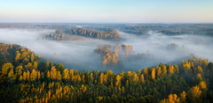 Autumn foggy forest (czdistagon.com) Tags: autumn dawn sunbeam fog nature landscape morning green forest sun scenic view sky background sunrise outdoor travel cloud beautiful natural mist mountain drone scenery sunset environment hill sunlight aerial misty light jungle spring adventure wild season valley foggy tropical rainforest park plant trees tourism river scene colorful water russia