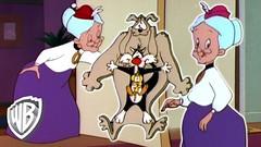 Looney Tunes | Dobule Grannies! | Classic Cartoon | WB Kids (Hoàng Đồng) Tags: animation bugsbunny cartoons chuckjone classiccartoons compilation fullepisodes looneytunes scoobydoowhereareyou scoobydoo tomandjerry