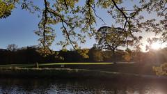 A day out at Shibden Park Lake. (Richard Abson) Tags: halifax calderdale shibden park lake sunset landscape sun samsung galaxys6 autumn trees water reflection sky