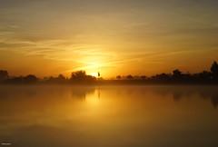 De Maas / La Meuse (metsemakers) Tags: maas meuse buggenum middenlimburg thenetherlands sunrise misty mist water sony a7ii tamron