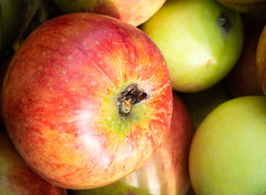 Apples 3 (S's images) Tags: west dean garden autumn harvest apples kitchen fruit orchard red