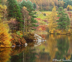 Tarn Hows Autumn (Dave Snowdon (Wipeout Dave)) Tags: canoneos1100d davidsnowdonphotography landscape autumn fall nationaltrust tarnhows trees foliage colour woodland leaves tarn reflections