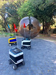 Waiting for Service (Melinda Stuart) Tags: robots robotics ucb berkeley campus delivery transpsort science waiting kiwibot three sculpture tree fooddelivery business aroundtown