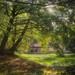 Lumière matinale sur la Veuze.                                  _DSC4752_edit