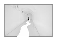 the white projected river (heinzkren) Tags: white linz austria höhenrausch blackandwhite bw sw schwarzweis monochrome urban kultur kulturquartier ausstellung exhibition girl gang art artwork highkey panasonic lumix gallery corridor indoor kunst frame rahmen geometry lines innamoramento