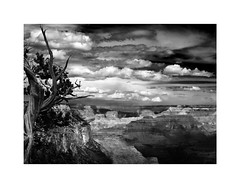 Grand Canyon (Joe Franklin Photography) Tags: grandcanyon grandcanyonnationalpark blackandwhite bw almostanything arizona az clouds canyon southwest
