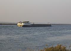 Parana Fracht Schiff auf dem Rhein bei Neuried (olds.wolfram) Tags: eni 06004306 schiff rhein neuried wasser parana belgien