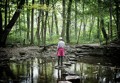 On the stepping stones at Glen Helen, Yellow Springs, Ohio (Randy Durrum) Tags: glen helen stepping stones yeloow springs ohio green trees creek stream river durrum nikon 5300
