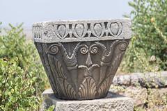 2018/07/09 12h23 chapiteau de colonne, Volubilis (Valéry Hugotte) Tags: 24105 antiquité maroc volubilis canon canon5d canon5dmarkiv chapiteau colonne romain ruines fèsmeknès ma