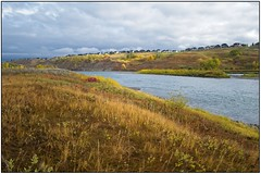 Banks of the Bow (geelog) Tags: alberta calgary colours bowriver water autumn fall