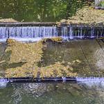 a small waterfall thumbnail