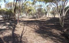 7 Grand Valley Court, Mullumbimby Creek NSW