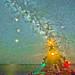 Stars and Sea 1, variant