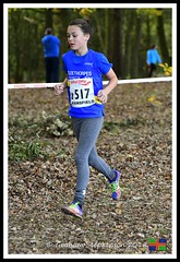 B517 U13 G (4) (nowboy8) Tags: nikon nikond500 xc nationalxcrelays mansfield berryhillpark notts crosscountry relays relay woods cleethorpesac cleeac team