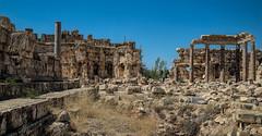 Roman Ruins at Baalbek (stevebfotos) Tags: beqaavalley lebanon baalbeck romanruins ancientruins baalbekdistrict beqaagovernorate lb