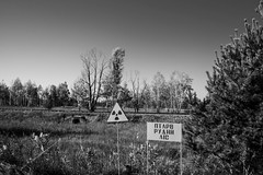 The Red Forest (TryVision) Tags: forest red redforest pripyat ukraine zone chernobyl chornobyl nikon radioactive radiation disaster alienation exclusion exclusionzone tragedy accident monochrome monochromephotography blackwhite bw nature