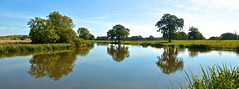 CROOME REFLECTIONS (chris .p) Tags: croome park worcestershire nikon d610 capture uk autumn 2018 nt nationaltrust water reflections tree trees september england croomelandscapepark view landscape grass sky