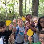 1ste leerjaar gaat naar het bos
