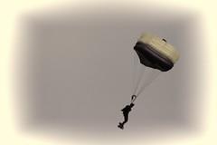 At Fleetweek 2018, San Francisco_138 (Walt Barnes) Tags: monotone canon eos 60d eos60d canoneos60d wdbones99 wdbones clouds sky scenery skyline vista view bay sanfranciscobay water fleetweek ca calif marinagreen fleetweeksf leapfrogs usn parachute demonstration team parachutedemonstrationteam seals navyseals smoke warfare military vignette