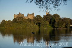 Linlithgow Palace (wanderinghaggis) Tags: lilithgow palace historic building outdoor outside scotland skyline weather autumn sun sony a6000 countryside country life west lothian mary queen setting architecture image evening royal trees urban outdoors photography scene sky day linlithgow landscape loch light exposure visual new