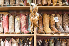 San Francisco - 2018 (Laura Merrill Photos) Tags: travel america holiday photography landscape portraiture sheffield sheffieldphotographer lauramerrillphotos san francisco las vegas sanfrancisco lasvegas nevada elvis haightashbury japaneseteagarden alcatraz tram sanfranciscotram fremontstreet casino binion heartattackgrill bellagio goldengatepark goldengatebridge golden gate amoebamusic amoeba music mgm grand resort tropicana excalibur barrymanilow flamingo redrockcanyon welcometolasvegassign binions elcortez sausalito
