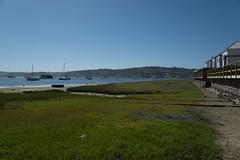 DSC04447.jpg (taarhaug) Tags: gardenroute knysna westerncape southafrica za