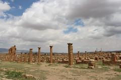 Roman Ruins, Timgad (Buster&Bubby) Tags: romanruins timgad trajan romanemperortrajan thamugadi jamesbruce