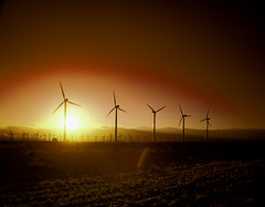 California Wind Turbines at Sunset. Original image from Carol M. Highsmith's America, Library of Congress collection. Digitally enhanced by rawpixel. (Free Public Domain Illustrations by rawpixel) Tags: agriculture amazing america american autumn beautiful brilliantly california carolhighsmith carolmhighsmith cc0 champaign country countryside crop field harvest landscape missouri name natural nature nobody outside plant power powergeneration powersystem renewableenergy rural season shine sky solar solarpanel sunshine sunset tree turbines unitedstates unitedstatesofamerica us usa wind windpower windturbine windturbines windmill wonderland yellow
