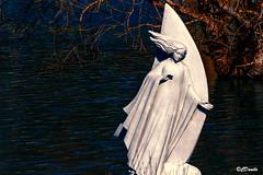 Sailing with the light of the moon (danilocolombo69) Tags: lago luna albero acqua marmo statua danilocolombo69 danilocolombo nikonclubit