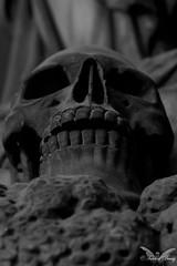Genova, Cimitero Monumentale di Staglieno (Sven Kapunkt) Tags: genova gräber grab graveyard grabmal gothic genua engel angel friedhof friedhöfe cemetery cemeteries cimetière campo cimitero italien italia italy statue staglieno