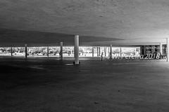 Parque Ibirapuera (W. Pereira) Tags: brasil brazil sampa sãopaulo wpereira wanderleypereira nikon wpereiraafotografias wanderleypereirafotografias