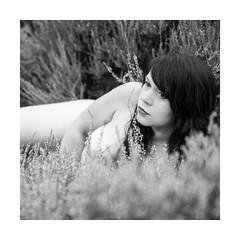 Stephanie (Knipsbildchenknipser) Tags: sw schwarzweiss monochrome blackandwhite blackwhite bw stephanie girl female portrait akt nude nackt natur nature outdoor heide mehlingerheide pfalz sommer summer square