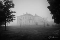 A Quiet Place (Fredrik Lindedal) Tags: quiet silence darkness dark fog house bnw trees alone sweden sverige svartvitt blackandwhite