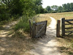 Take the Low Road (The3Winds) Tags: gate netherlands everdingen path