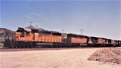 Union Pacific freight locomotives at Cajon Summit in 1993 (Tangled Bank) Tags: union pacific train railroad railway north american emd locomotive sd402 california 1990s 90s cajon pass summit