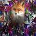 Fox lurking