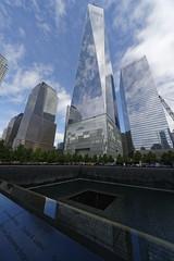 One World Trade Center Behind 9/11 Memorial (dcstep) Tags: a7r4590dxo oneworldtradecenter 911memorial nyc newyork usa pixelpeeper skyscraper tower glass mirrored glasstower clouds bluesky regalprincess sony dxophotolab allrightsreserved copyright2018davidcstephens