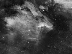 Pelican Nebula (IC 5070) (Phil Wollenberg) Tags: pelican nebula ic 5070 wollenberg takahashi sbig televue astrophotography astro