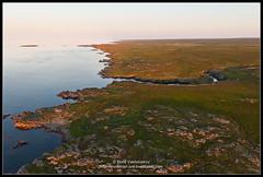 2018_июль_Поной_3_022 (Snowman_pro) Tags: flight kolapeninsula nord sea summer water вода кольскийполуостров лето море полёт сосновка белоеморе whitesea