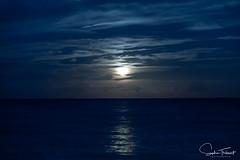 Lever de lune (www.sophiethibault.ca) Tags: 2018 usa plage octobre floride delraybeach lune leverdelune mer