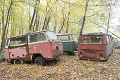 VW Graveyard (Jonnie Lynn Lace) Tags: abandoned abandonedamerica vw volkswagen abandonedcar rusty rust decay decayed decaying chasinglight light derelict color colour autumn fall fallcolors fallleaves vwbus leaf leaves orange yellow red white green tree trees perspective nature old nikkor vehicle car cars vehicles naturaleza naturetakesover autumnleaves outside gold exterior america american german otoño window windows ruins modernruins peelingpaint urbex outdoor nikon d750 24mm woods forest bus